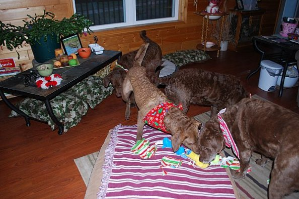 Stealing the presents.