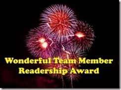 bwonderful-readership-award2-11_thumb