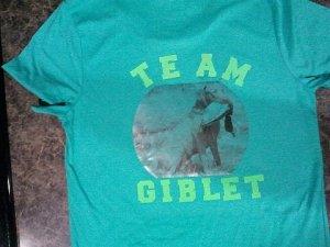 The shirt I made.