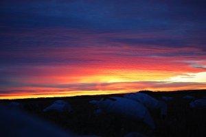 The sunrises were just beautiful.