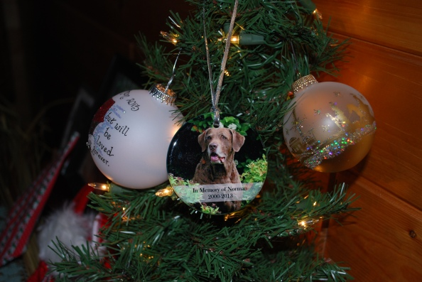 Norman's ornament from Harmony Pet Care