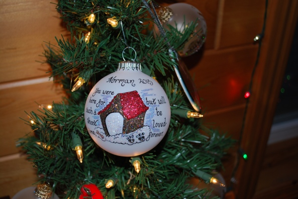 Norman's ornament from his Aunt Lynn.