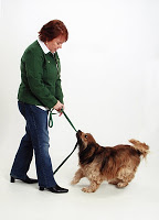 Peg & Kelly - Pulling on Leash small