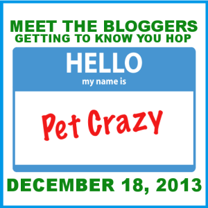 Meet The Bloggers~I'm JoAnn (1/6)