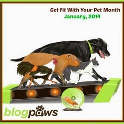 blogpaws jan fit with pet