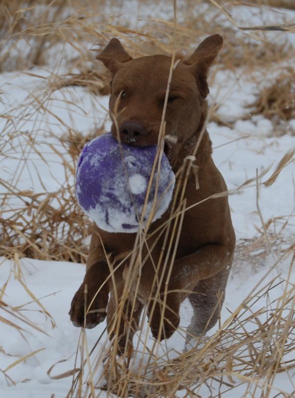 I got my ball back, na na na na