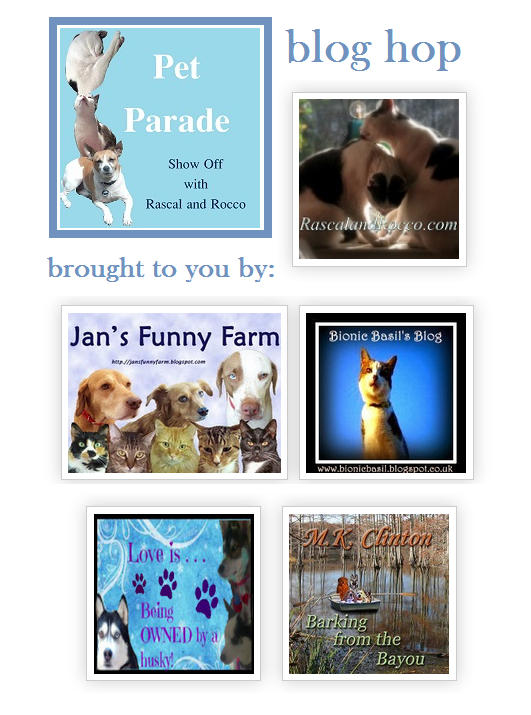 Pet Parade- Animals are taking over. #PetBloggers grow and share with us! All posts get pinned