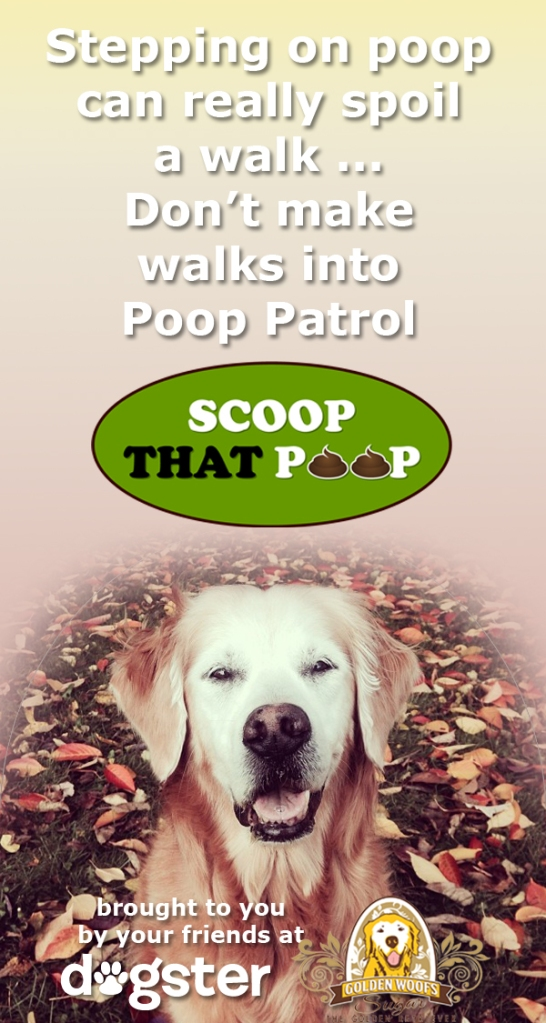 20131112-dogster-scoop-that-poop